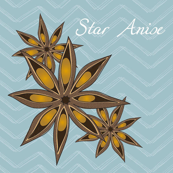 Plant Print featuring the digital art Star Anise Art by Christy Beckwith