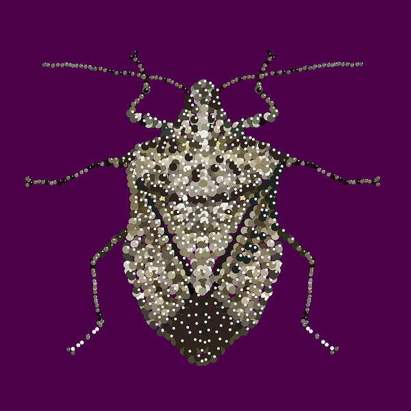 Stink Bug Print featuring the digital art Stink Bug Bedazzled by R Allen Swezey