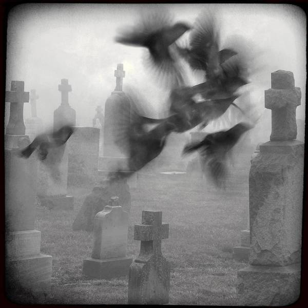 Ghostly Birds Art Print featuring the photograph The Ghost Birds by Gothicrow Images