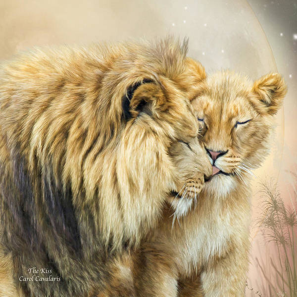Lion Art Print featuring the mixed media The Kiss by Carol Cavalaris