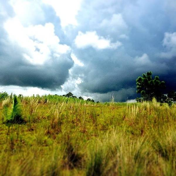 Igersoflouisiana Art Print featuring the photograph There's A Storm Brewing!!! #golf by Scott Pellegrin
