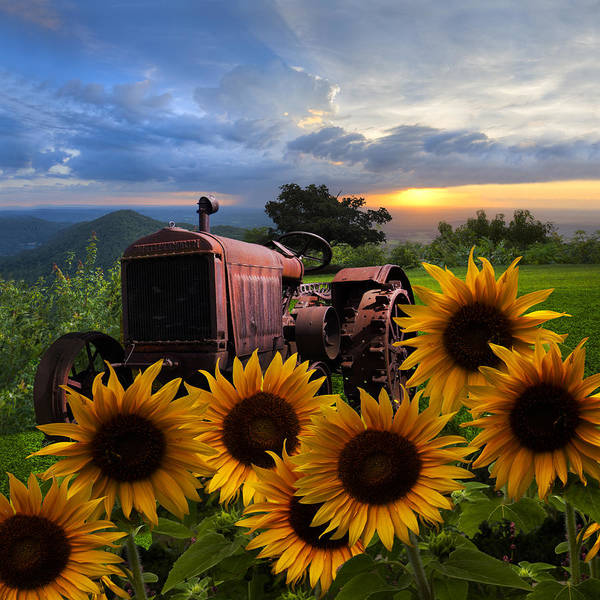 Appalachia Print featuring the photograph Tractor Heaven by Debra and Dave Vanderlaan