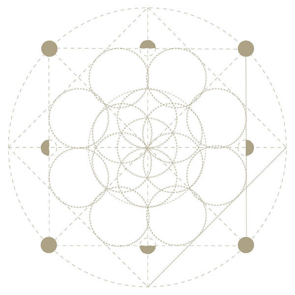 Vector Sacred Geometry Symbol: Seed Of Life, The Precursor Of The Flower Of  Life Or The Pattern Of Creation  Seed Of Life Foreshadowing Patterns Of
