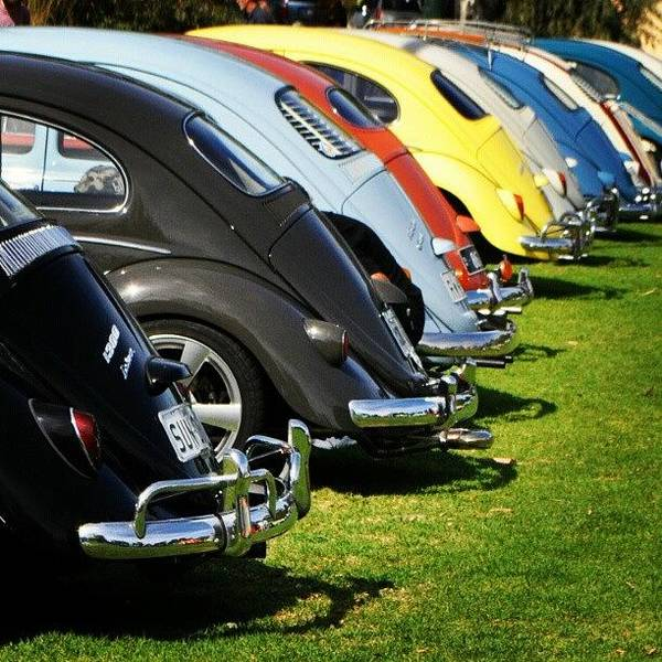 Car Art Print featuring the photograph Volkswagen Line Up by Kirsten Hocking