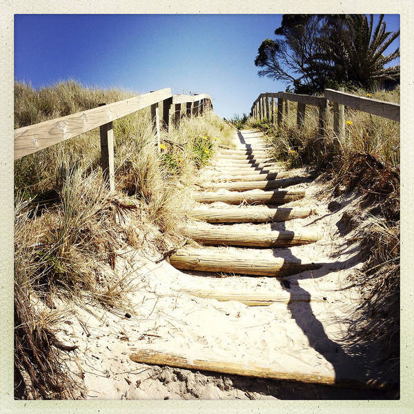 Wood Art Print featuring the photograph Walkway by Les Cunliffe
