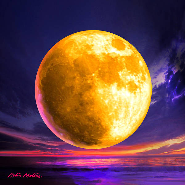 Full Moon Art Print featuring the digital art Whole Of The Moon by Robin Moline