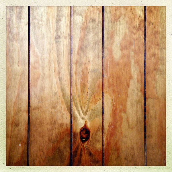 Panel Art Print featuring the photograph Wooden Panel by Les Cunliffe