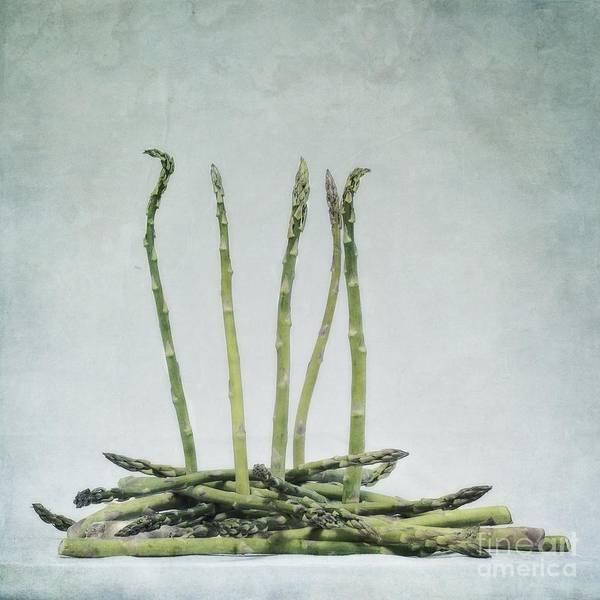 Asparagus Art Print featuring the photograph A Bunch Of Asparagus by Priska Wettstein