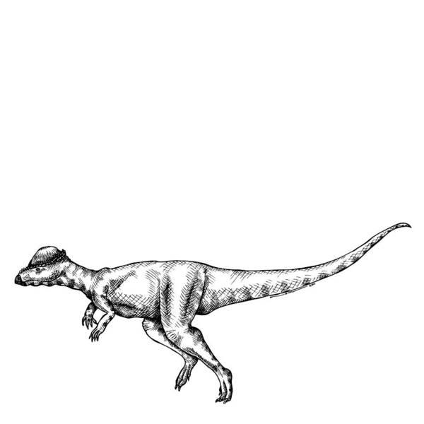 Cartoon Print featuring the drawing Alaskacephale Dinosaur by Karl Addison