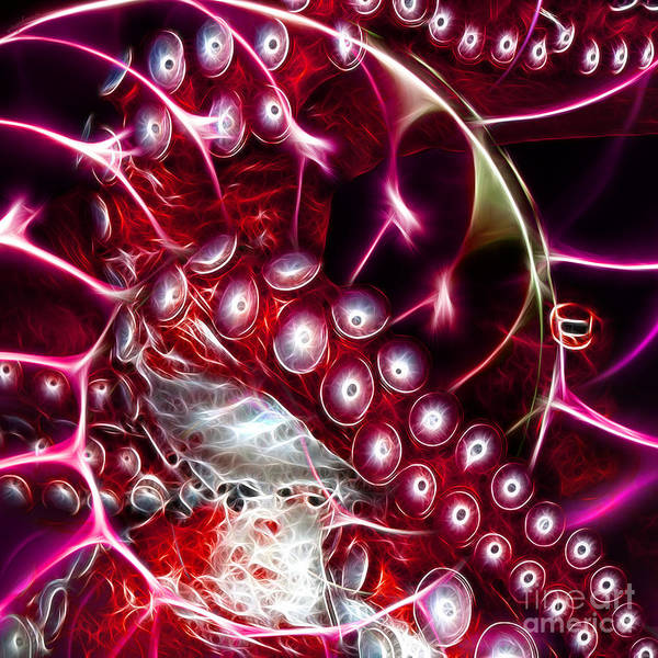 Octopus Art Print featuring the photograph Creatures Of The Deep - Octopus Caught In The Swirl Of The Giant Nautilus - Electric - Square - Red by Wingsdomain Art and Photography