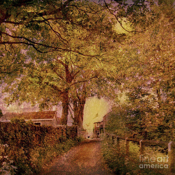 Lane Way Art Print featuring the photograph Hartley Lane by Linde Townsend