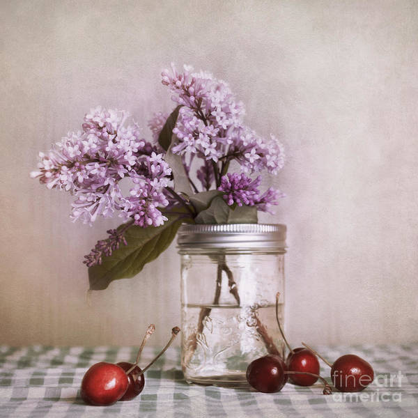 Cherry Art Print featuring the photograph Lilac And Cherries by Priska Wettstein