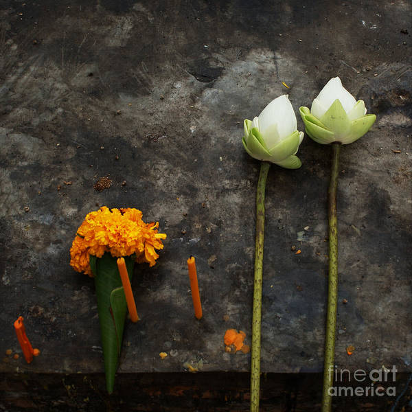 Lotus Art Print featuring the photograph Lotus Flowers On A Thai Shrine by Paul Grand