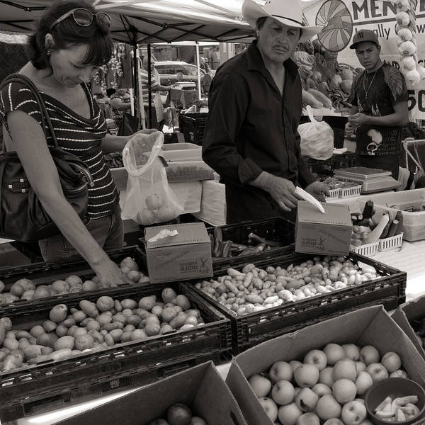 Market Art Print featuring the photograph Market Days Choices by Dale Davis
