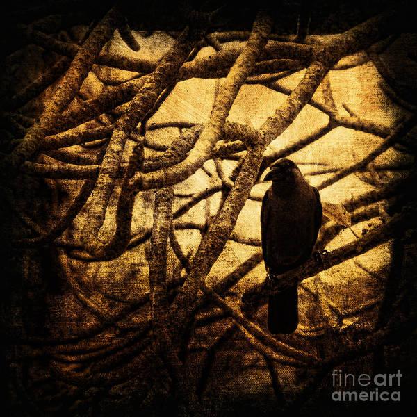 Photomanipulation Art Print featuring the photograph Messenger by Andrew Paranavitana