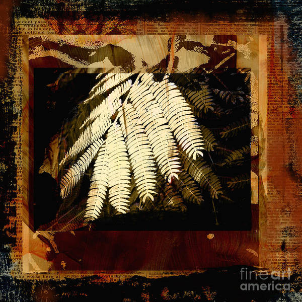Mixed Media Digital Collage Art Print featuring the mixed media Mimosa Leaf Collage by Ann Powell