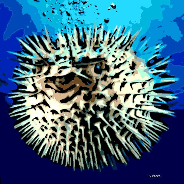 Puffer Fish Art Print featuring the photograph Pointed Opinion by George Pedro