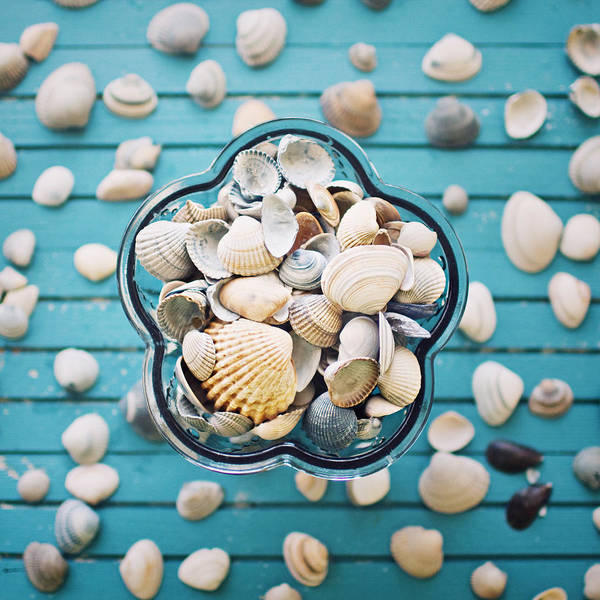 Square Art Print featuring the photograph Shells In Bowl by Julia Davila-Lampe