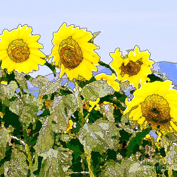 Sunflowers Print featuring the painting Sunflowers Sunbathing by Artist and Photographer Laura Wrede