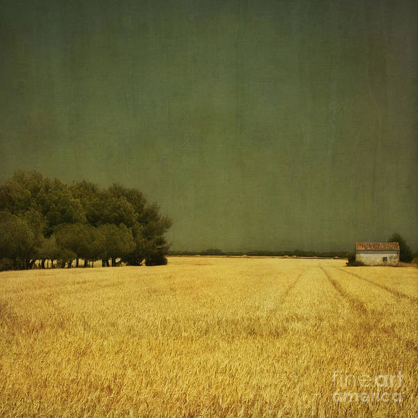 White Art Print featuring the photograph White Barn by Paul Grand