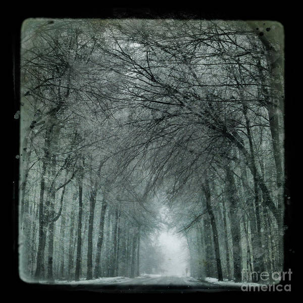 Ttv Art Print featuring the photograph Winter Drive by Gina Signore