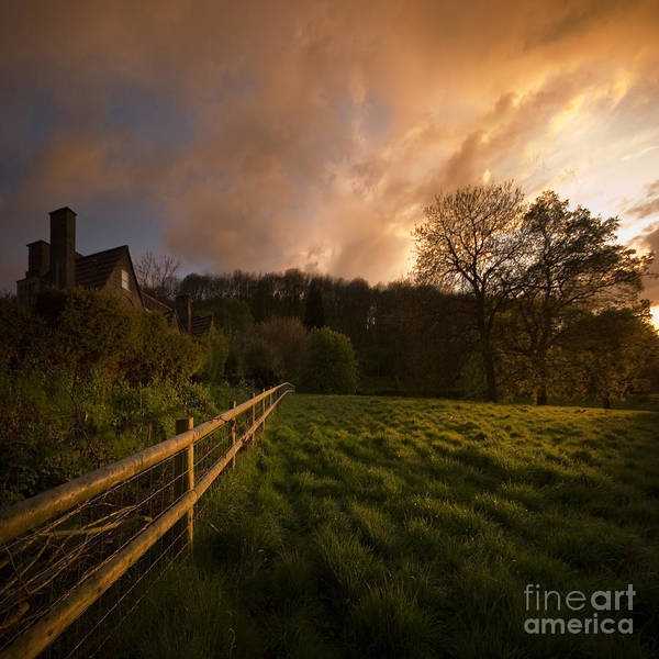 Rural Art Print featuring the photograph Behind The Fence by Angel Ciesniarska