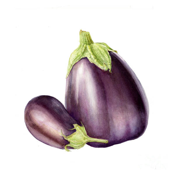 Farmers Market Art Print featuring the painting Eggplants by Fran Henig