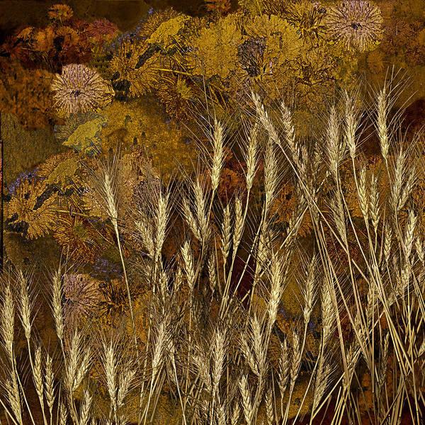Garden Art Print featuring the photograph Fall Garden by Jeff Burgess