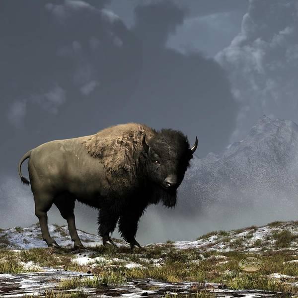 Bison Art Print featuring the digital art Lonely Bison by Daniel Eskridge