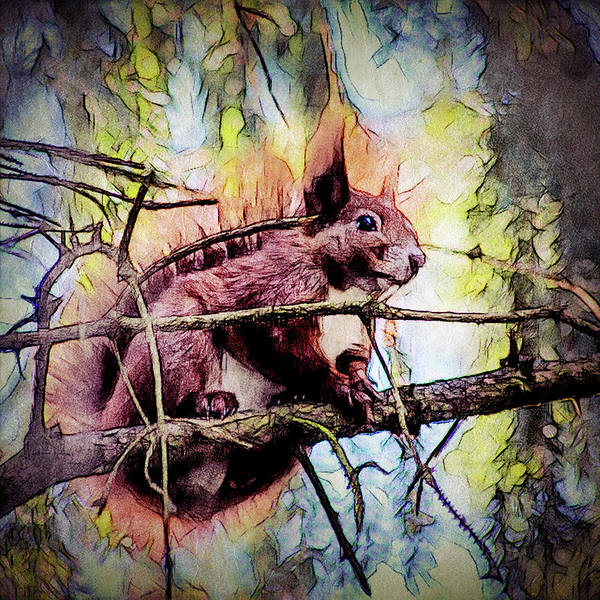 Red Art Print featuring the digital art 11452 Red Squirrel Sketch Square by Colin Hunt