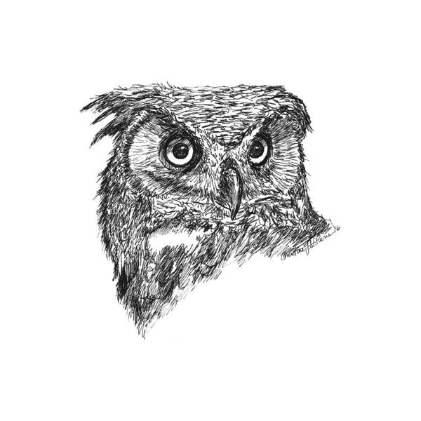 Great Horned Owl Drawings (Page #2 of 2) | Fine Art America