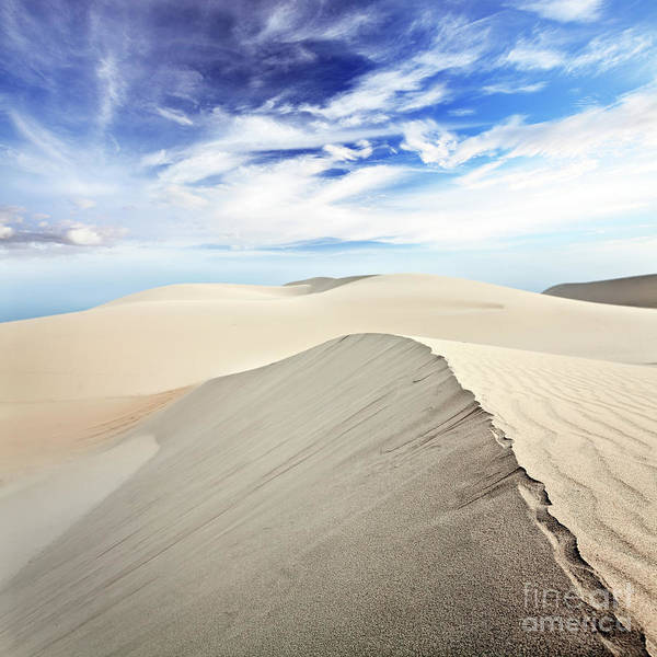 Desert Art Print featuring the photograph Desert by MotHaiBaPhoto Prints