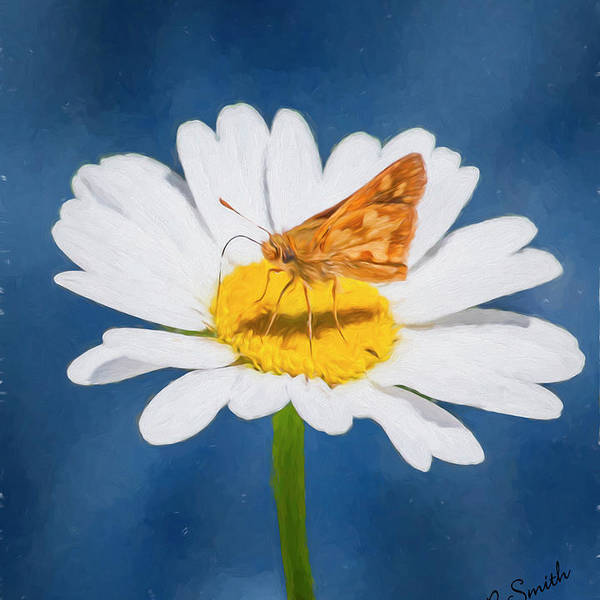 Flowers & Plants Art Print featuring the photograph A Moth Collects Pollen On A Single Daisy Blossom. by Rusty R Smith