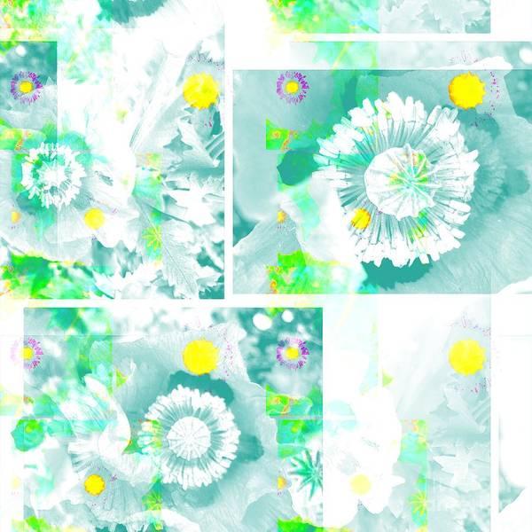 Colour Choice Poppy Collage Art Print featuring the mixed media Colour Choice Poppy Collage by Barbara Moignard