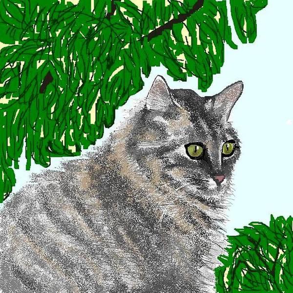 Cat Art Print featuring the digital art Barnstable by Carole Boyd