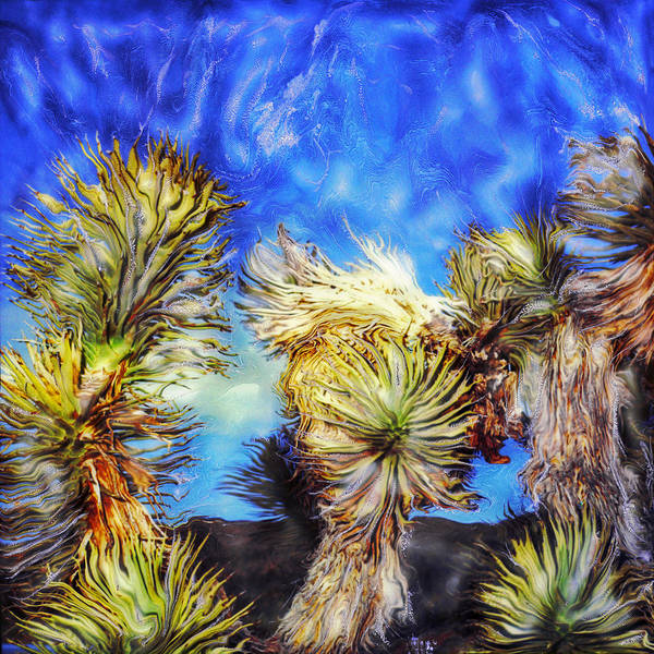 Paul-tokarski Art Print featuring the photograph Blue Sky Yucca by Paul Tokarski
