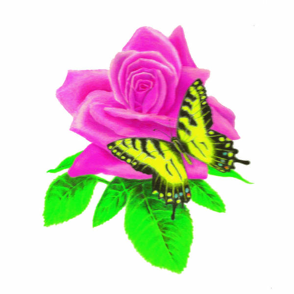 Butterfly Art Print featuring the digital art Butterfly Sitting On A Rose by Larry Ryan