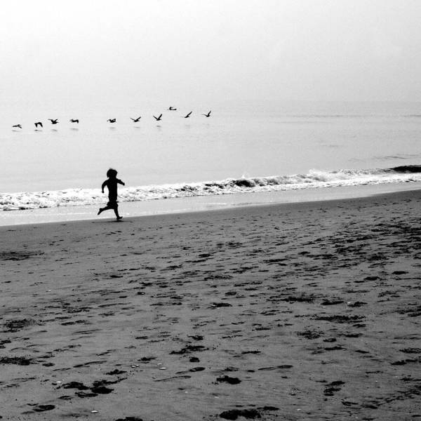 Photograph Art Print featuring the photograph Carefree by Jean Macaluso