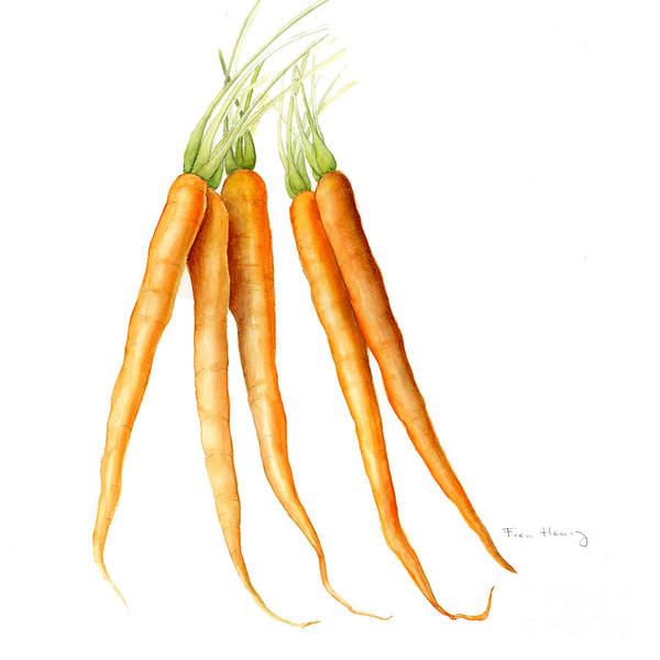 Carrots Art Print featuring the painting Carrots by Fran Henig