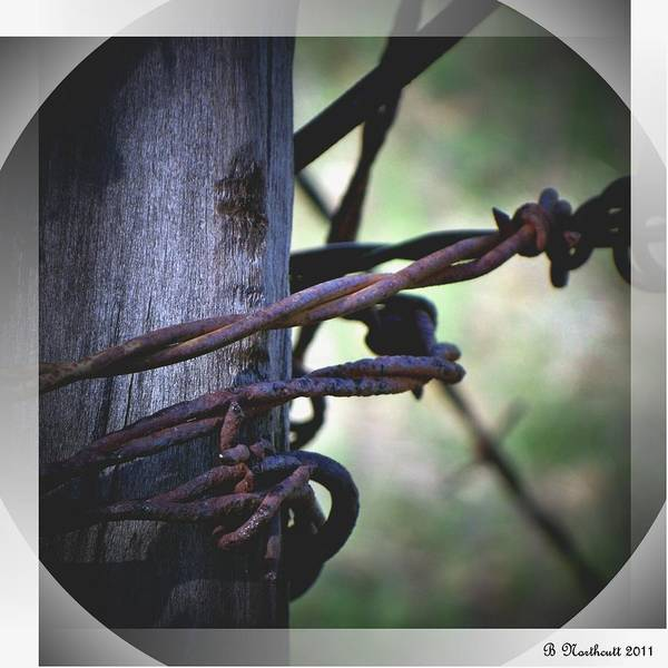 Barbed Art Print featuring the photograph Don't Fence Me In by Betty Northcutt