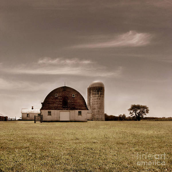 Farm Art Print featuring the photograph Dry Earth Crumbles Between My Fingers And I Look To The Sky For Rain by Dana DiPasquale