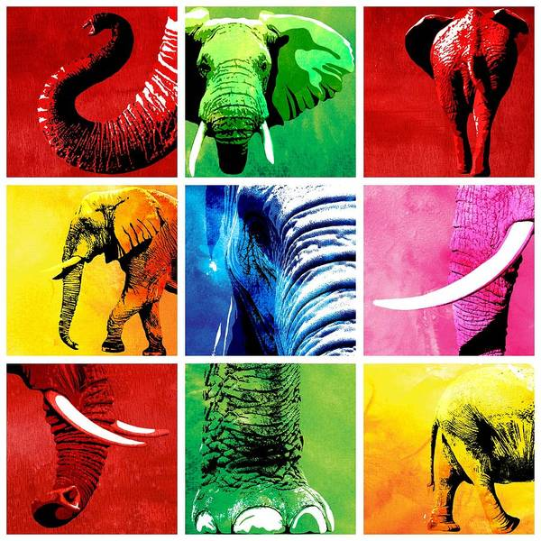 Elephant Art Print featuring the painting Elephant Animal Decorative Colorful Multiptych 1 - By Diana Van by Diana Van