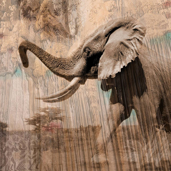 Elephant Art Print featuring the photograph Elephant Visions Wall Art by Karla Beatty