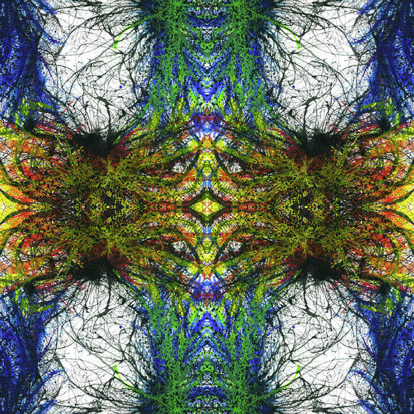 Abstract Art Print featuring the mixed media Enchantment Of The Collective Evolution #1507 by Rainbow Artist Orlando L