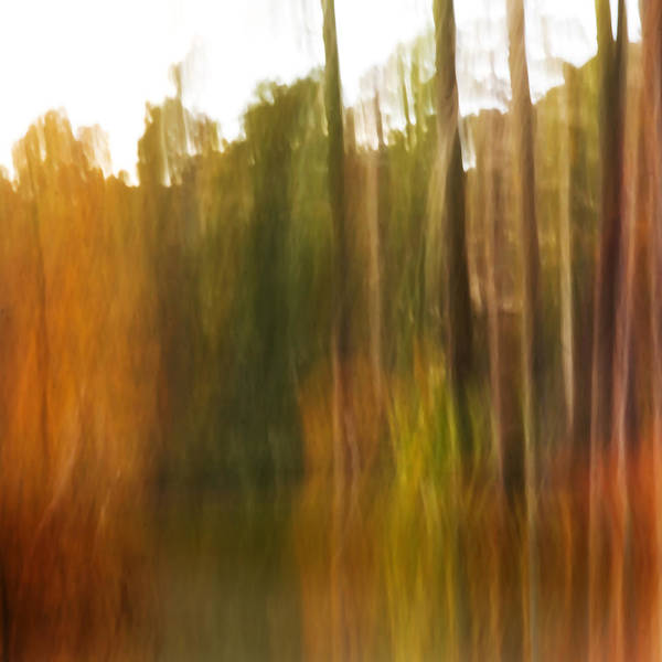 Abstract Art Print featuring the photograph Fall Energy by Margaret Denny