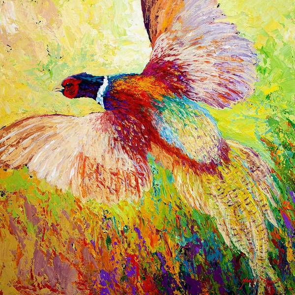 Pheasant Art Print featuring the painting Flushed - Pheasant by Marion Rose