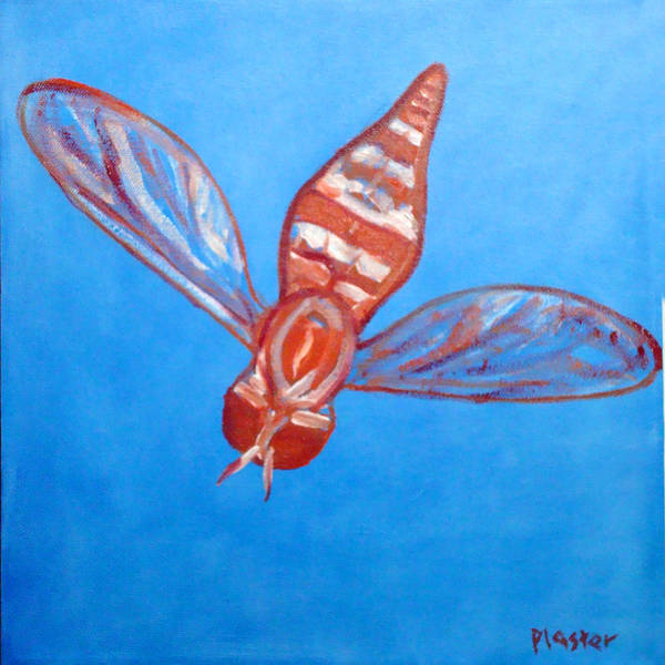 Flies Art Print featuring the painting Fly South by Scott Plaster