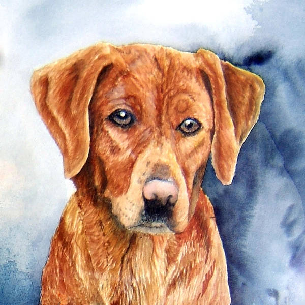 Golden Retriever Art Print featuring the print Golden Retriever Sara by JoLyn Holladay