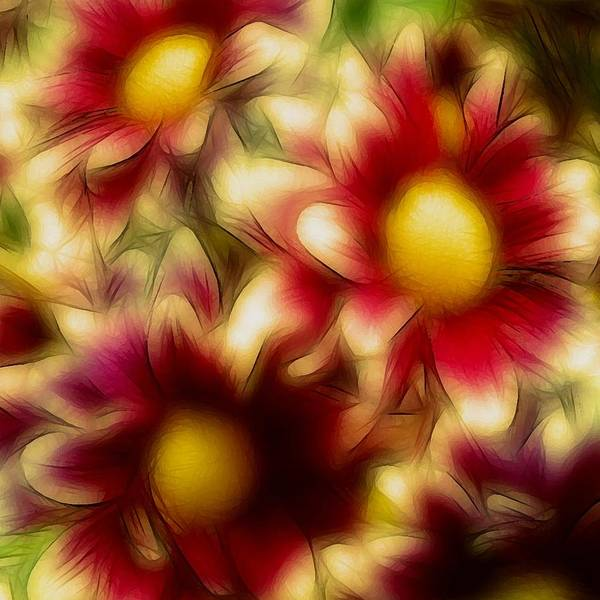 Flowers Floral Daisy Red Yellow Gold Golden Susan Epps Oliver Original Art Print featuring the photograph Golden by Susan Epps Oliver