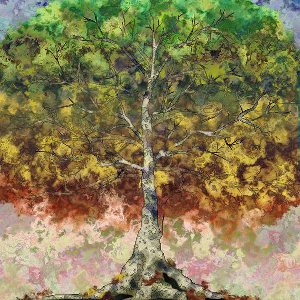 Sycamore Art Print featuring the digital art Great Sycamore by Gae Helton